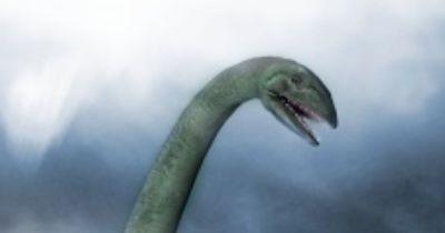 Nessie - Fabelwesen oder real?