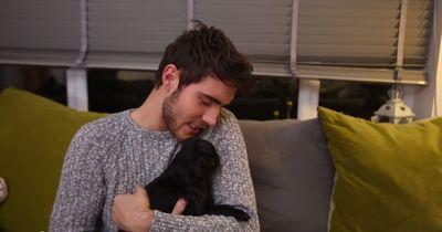 5 Youtuber präsentieren ihre Baby-Hunde