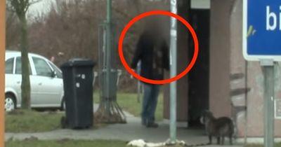 Schockierend: Hund auf Raststätte ausgesetzt. So reagieren die Passanten.