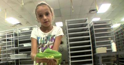 Kinder lieben Schlangen