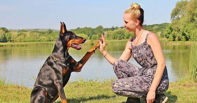 7 Anzeichen, dass du und dein Hund die besten Freunde seid.