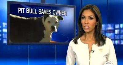 Ohne ihren Pit Bull wäre die Frau vielleicht nicht mehr am Leben