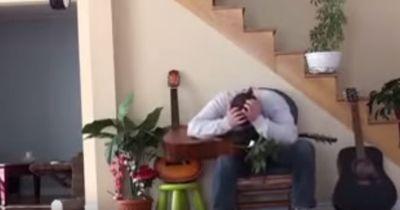 Mann schubst Katze vom Stuhl. Das hätte er lieber nicht tun sollen!