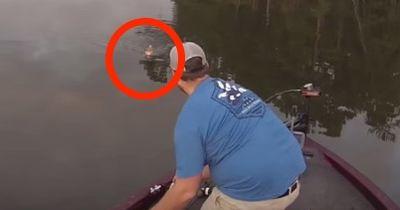 Was ihm da entgegenschwimmt, ist kein Fisch!