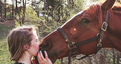 7 Indizien, die beweisen: Du willst ein Pferd!