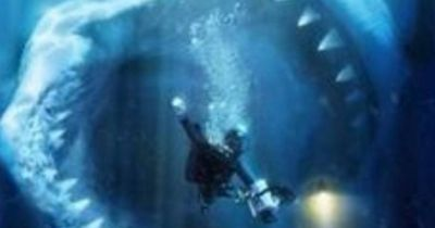 Megalodon - existiert der Megahai noch heute?