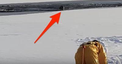 Kampf ums Überleben: WAS sie da aus dem Eis ziehen ist UNGLAUBLICH!