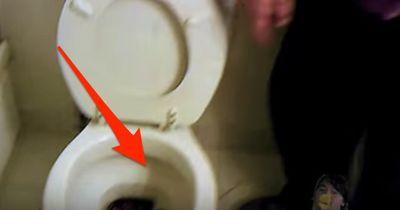 Sie war frisch in ihre Wohnung eingezogen, dann fand sie DAS in der Toilette!