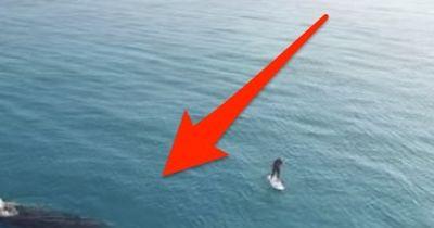 Dieser Mann paddelt auf dem Ozean