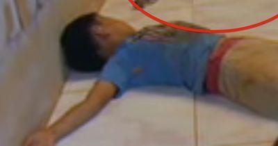 Dieser kambodschanische Junge schläft mit einem gefährlichen Tier