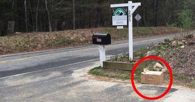 Sie fanden eine Box vor ihrem Haus. Was sie darin entdeckten, macht dich sprachlos...