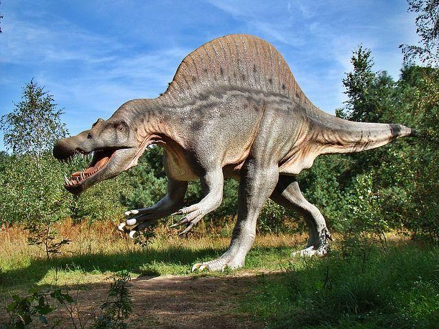 Sensationeller Fund: Dieser Dino bewohnte unsere Erde!