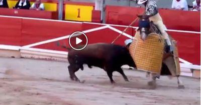 Stierkampf: Eine grausame Touristenattraktion