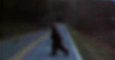 Videobeweis: Mann hat Bigfoot gesichtet