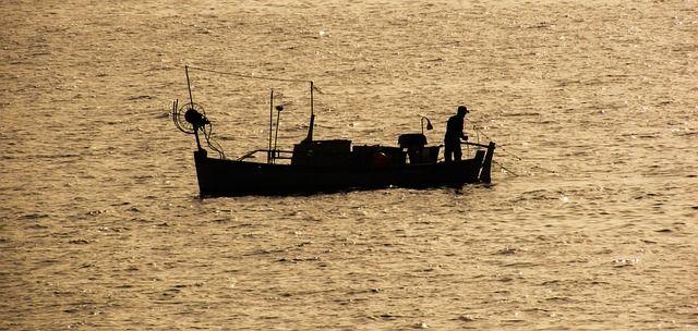 Wal schwimmt zu Fischerboot - was er will, ist einfach unglaublich!