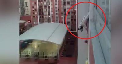 Ein Mann versucht, einen Hund aus dem 13. Stock zu retten