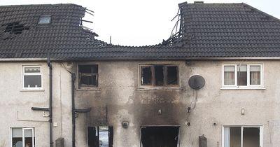 Dieser Hund hat seine Wohnung abgebrannt