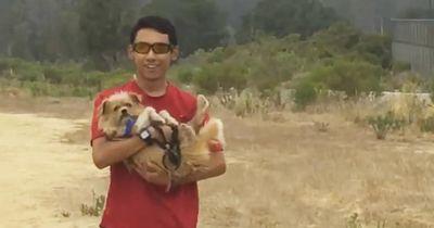 Dieses Sportteam hilft den Hunden aus dem örtlichen Tierheim