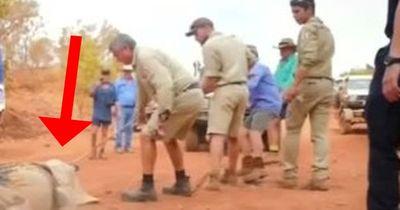 Sie haben in Australien ein riesiges Krokodil gefangen