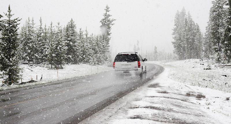 Urlauber retten spontan ein Ferkel aus dem Schneesturm