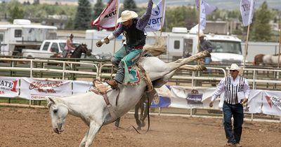Pferde werden auf abartige Weise gequält, um beim Rodeo besonders wild zu sein