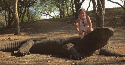 Diese wilden Tiere sind weniger gefährlich als erwartet