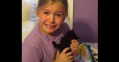 So reagiert das kleine Mädchen, als es ein Kätzchen geschenkt bekommt