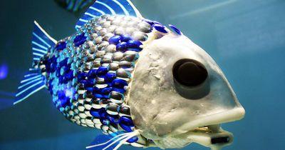 Roboter-Tiere: Forscher statten Lebewesen mit neuen Sinnen aus