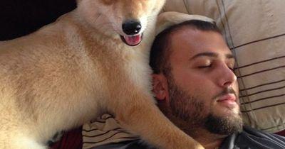 Dieses Haustier erobert das Internet im Sturm