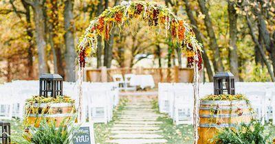 Zwei Tierärzte heiraten und machen das an ihrer Hochzeit