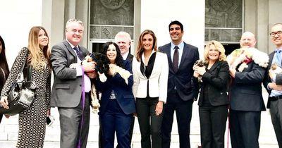 Das machen Stars jetzt um den Pet Rescue and Adoption Act zu unterstützen
