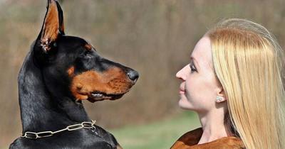 So lässt du deinen Hund spüren, dass du ihn liebst!
