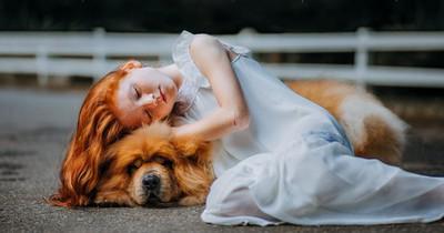 Dein Sternzeichen verrät, welcher Hund zu dir passt!