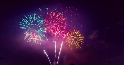 Panische Angst: Hund flieht vor Feuerwerk