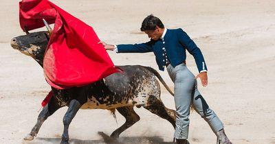 Dieses neue Gesetz revolutioniert den Stierkampf!