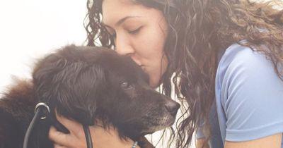 Sie will einen Hund adoptieren, doch merkt, dass die restlichen 250 auch Hilfe brauchen