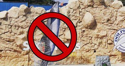 In dieser Stadt sind gefangene Delfine verboten worden
