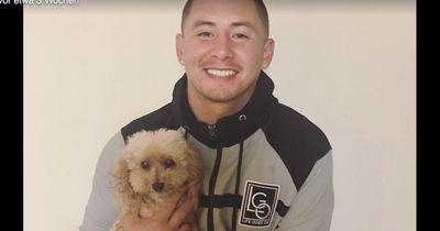 Sein Hund war plötzlich verschwunden