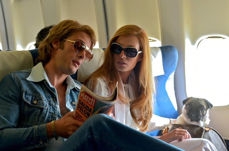 Dieses Bild zeig einen kleinen Hund, für dessen Flugreise man einiges beachten muss.