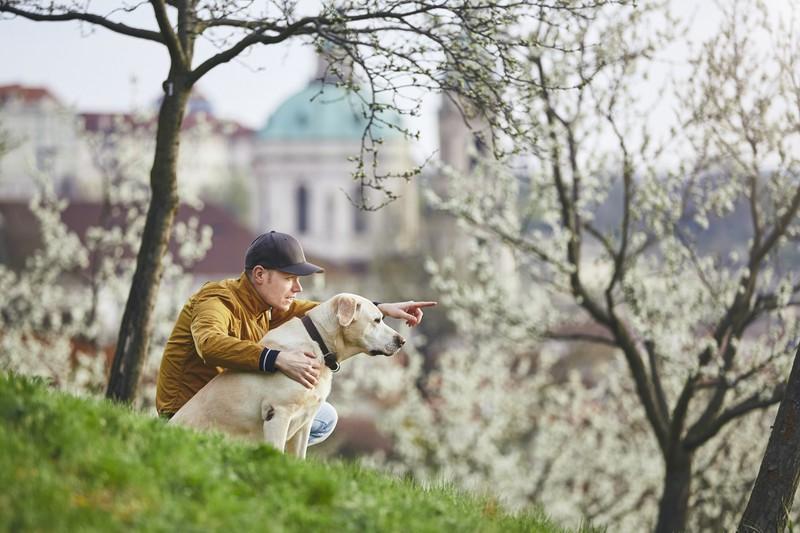 Dieses Bild zeigt die Tschechische Republik, ein besonders hundefreundliches Land.