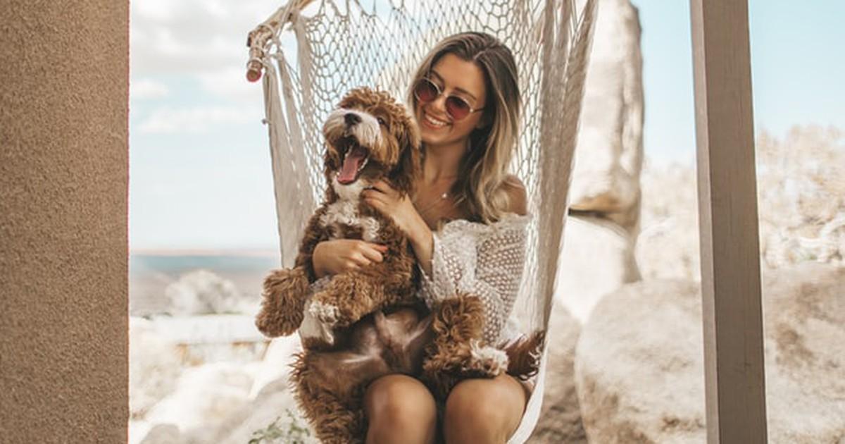 10 Dinge, die jeder Hundehalter wissen sollte