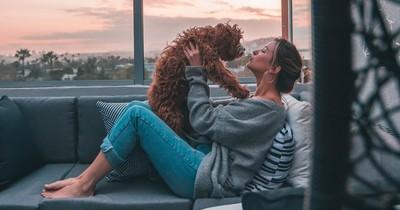 10 schöne Hundenamen, die du deinem Hund geben willst