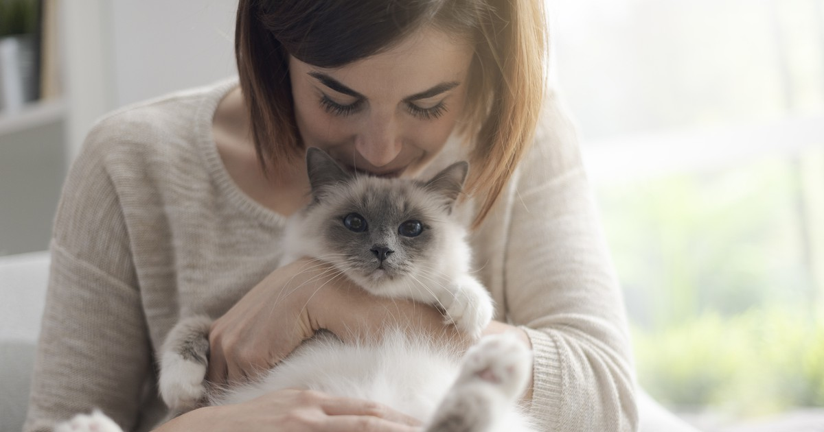 10 Dinge, die jeder Katzenhalter wissen sollte
