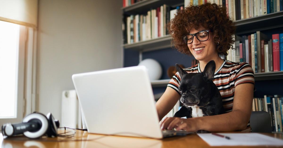Arbeiten trotz Hund: So bekommst du beides unter einen Hut