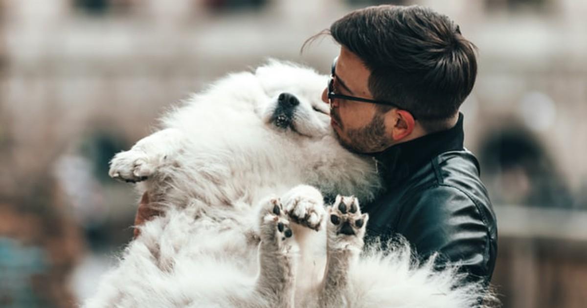 Welches Haustier passt zu mir? Kriterien, die du bei der Tierwahl berücksichtigen solltest