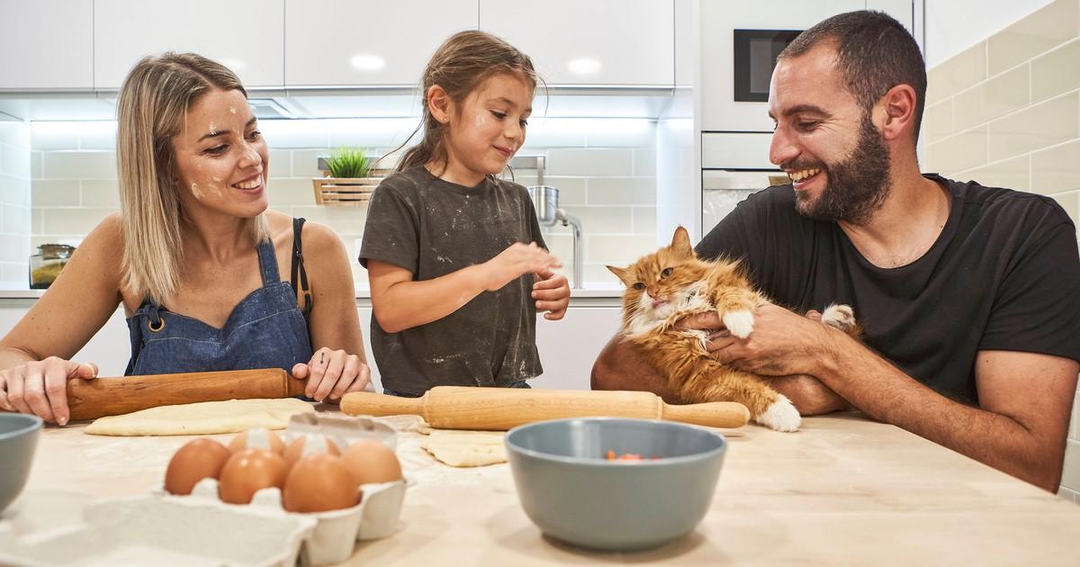 Katzenkekse selber backen: So einfach geht's