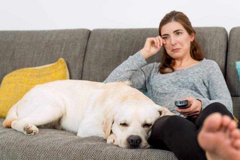 Reagiert dein Hund auf deine Emotionen, dann bedeutest du ihm sehr viel.