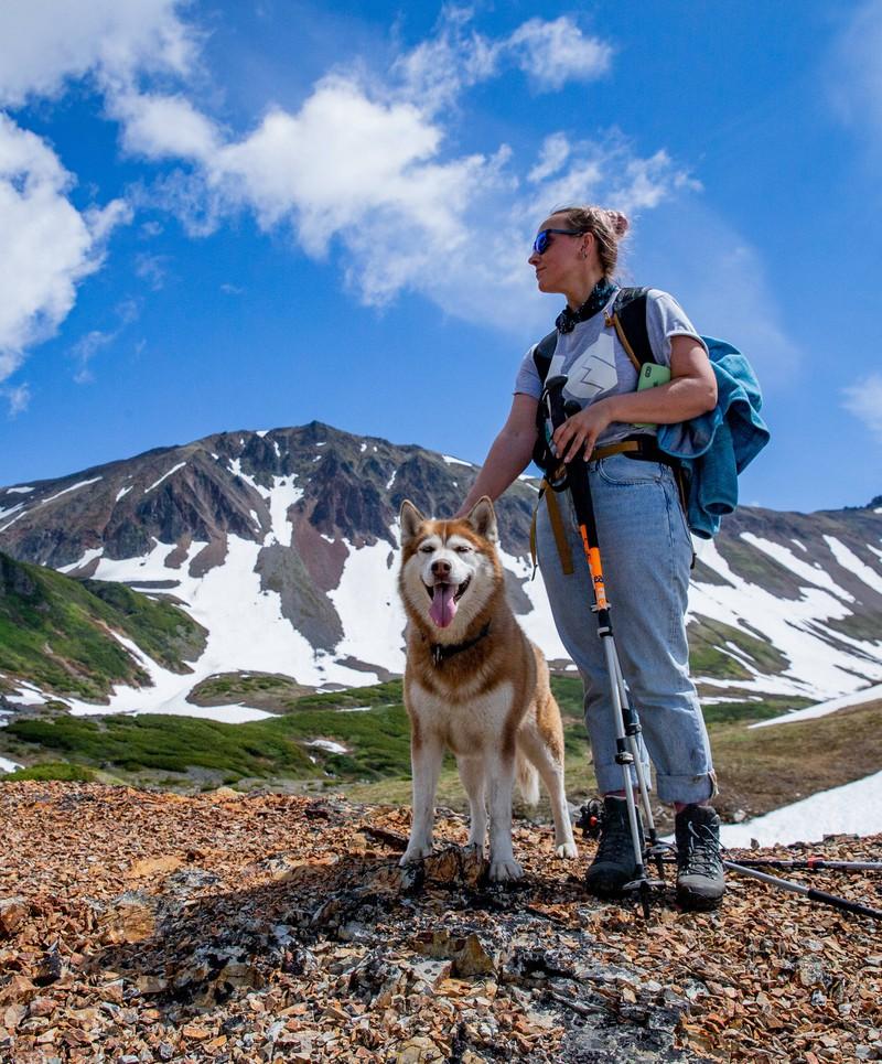 Dieser Hund genießt den Ausblick im Gebirge.