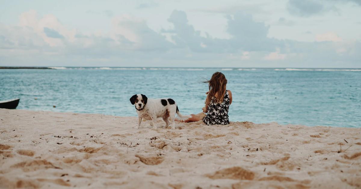 9 Reiseziele mit Hund: Hier ist es mit Hund am schönsten