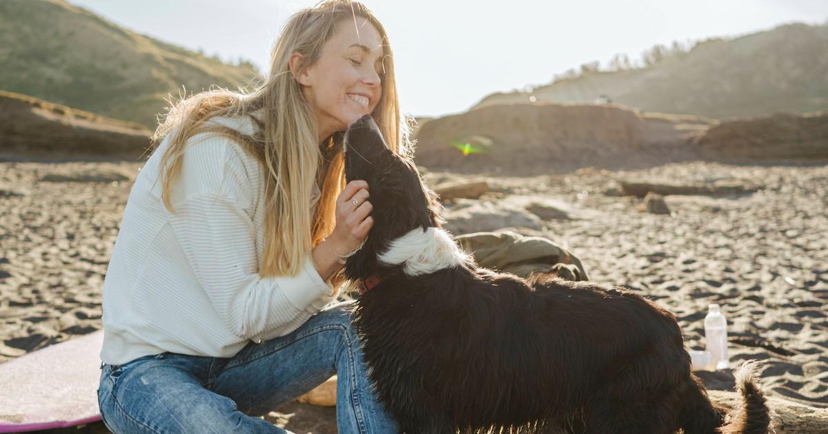 10 Reiseziele mit Hund: Wo ist der Urlaub mit Hund am schönsten